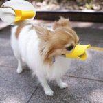 Kačice zobák ve tvaru tlamy pro psy Velikost S